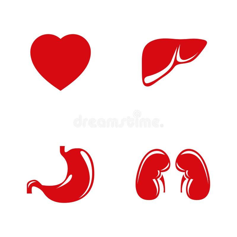 Ícones humanos do vetor dos órgãos internos ajustados ilustração stock