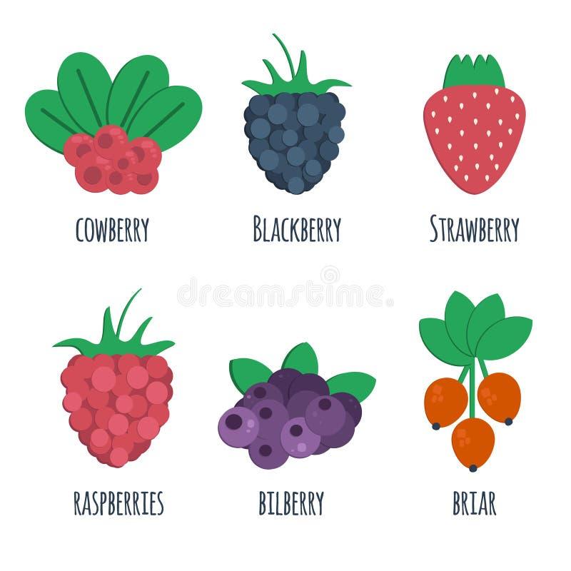 Ícones lisos da airela, da amora-preta, da morango, da framboesa, da uva-do-monte e do briar ilustração stock