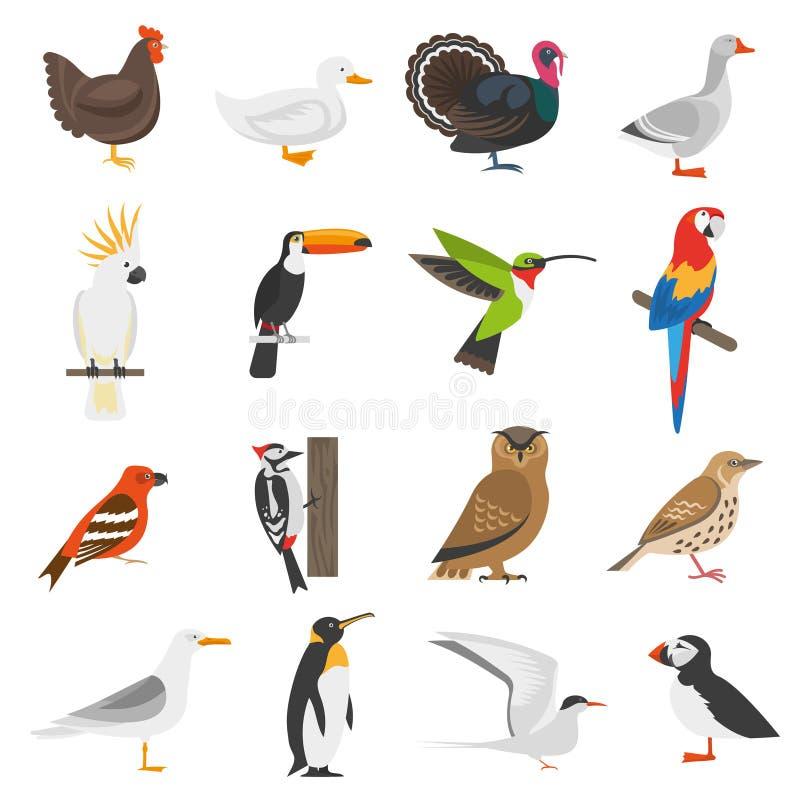 Ícones lisos da cor do pássaro ajustados ilustração stock