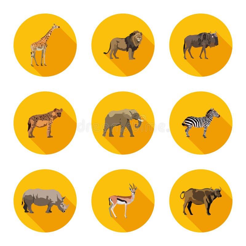 Ícones lisos dos animais de África ajustados ilustração royalty free
