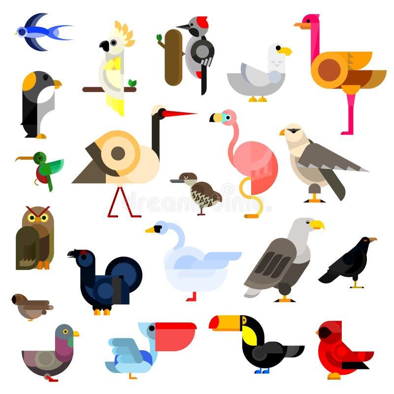 Ícones lisos dos pássaros selvagens, aquáticos, tropicais e urbanos ilustração do vetor