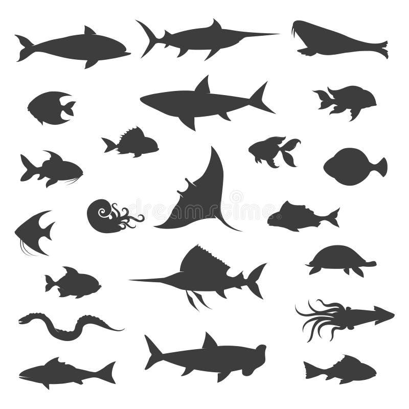 Ícones pretos do vetor das silhuetas dos peixes ilustração do vetor