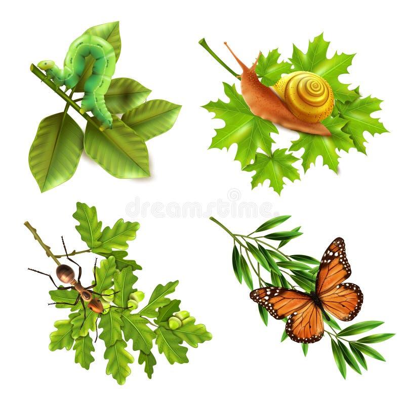 Ícones realísticos dos insetos ilustração royalty free