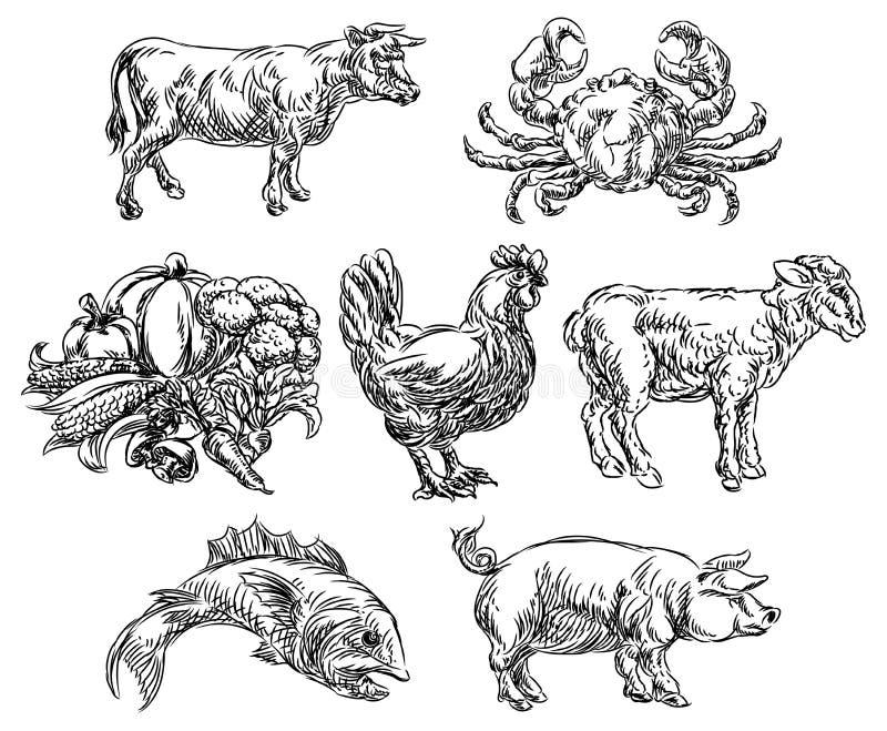 Ícones tirados mão das opções do menu do Grunge dos grupos de alimento ilustração stock