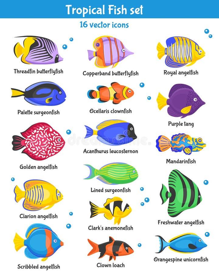 Ícones tropicais dos peixes ajustados ilustração stock
