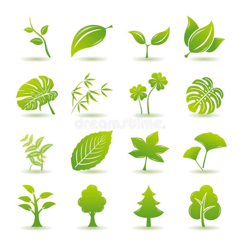 Ícones verdes da folha ajustados ilustração stock