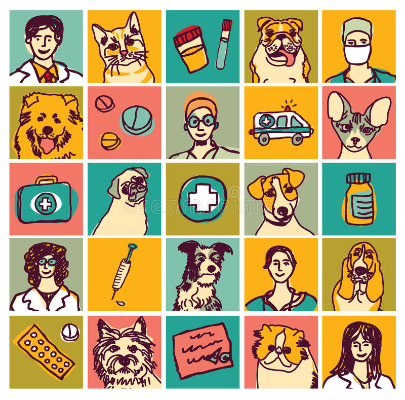 Ícones veterinários e objetos dos animais de estimação dos doutores ajustados ilustração stock