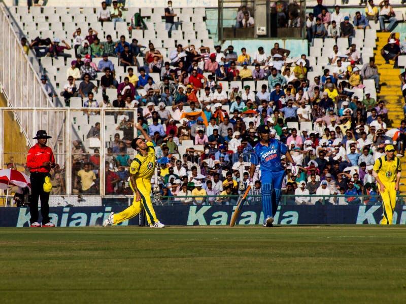 Índia contra o grilo de Austrália fotos de stock