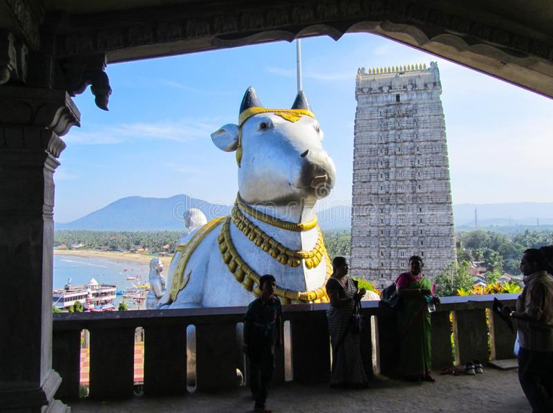Índia, o estado de Karnataka, a cidade de Murdeshwar 16 de novembro de 2014 Estátua da vaca sagrada e do Gopuram imagem de stock