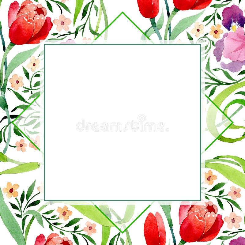 Íris e flor botânica do ornamento das tulipas Grupo da ilustração do fundo da aquarela Quadrado do ornamento da beira do quadro ilustração do vetor