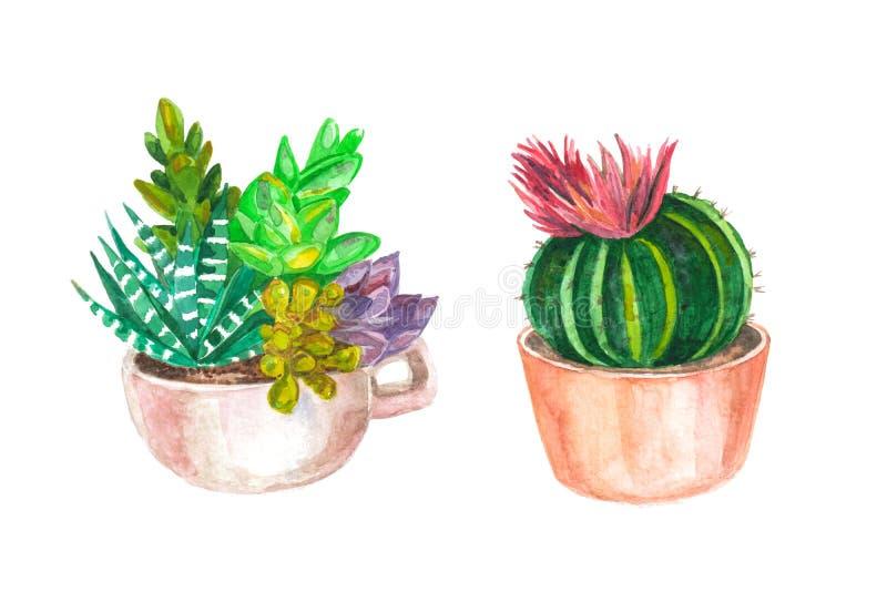 άνευ ραφής σχέδιο watercolor των κάκτων και succulents αρχαίο watercolor εγγράφου ανασκόπησης σκοτεινό κίτρινο διανυσματική απεικόνιση