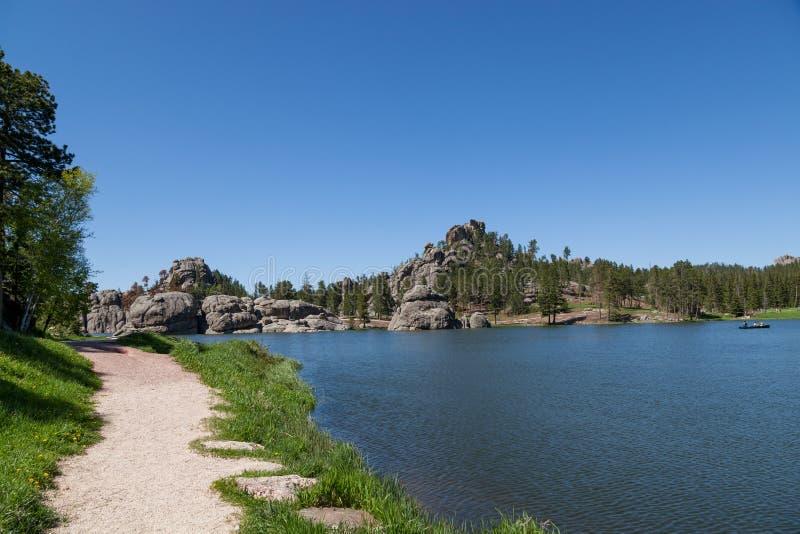 Άνοιξη στη δασική λίμνη στοκ εικόνες με δικαίωμα ελεύθερης χρήσης