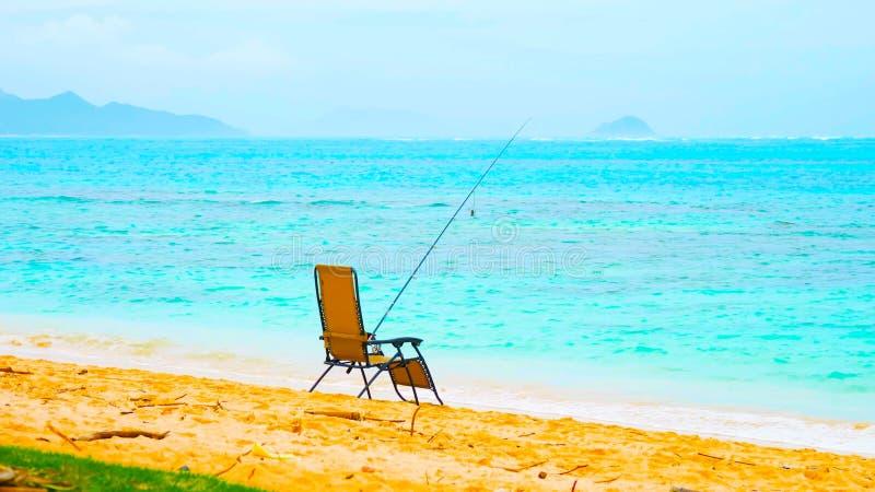 Άσπρη παραλία άμμου παραδείσου με το φοίνικα κοκοφοινίκων και την τυρκουάζ θάλασσα Θερινές διακοπές και έννοια ταξιδιού στοκ φωτογραφίες με δικαίωμα ελεύθερης χρήσης