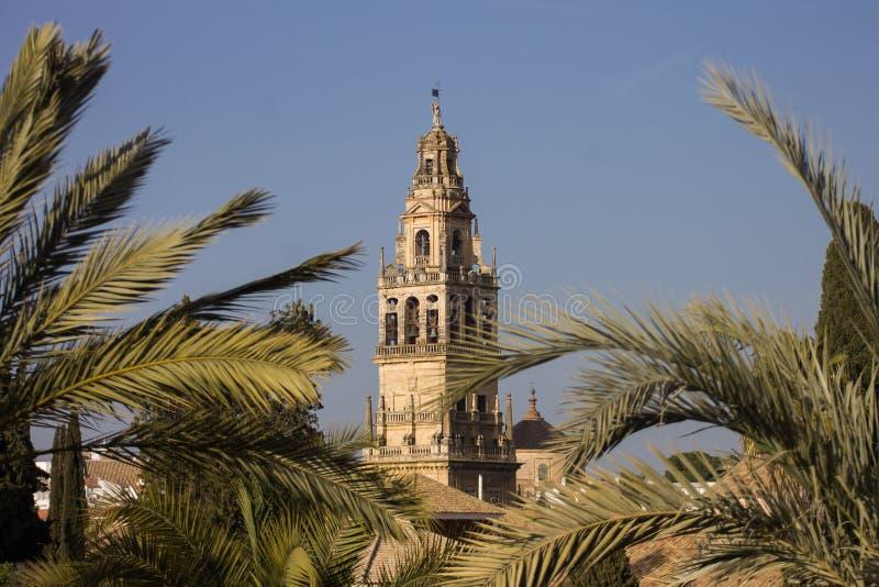 Άποψη του πύργου του μουσουλμανικού τεμένους της Κόρδοβα μεταξύ των φοινίκων στοκ εικόνα με δικαίωμα ελεύθερης χρήσης