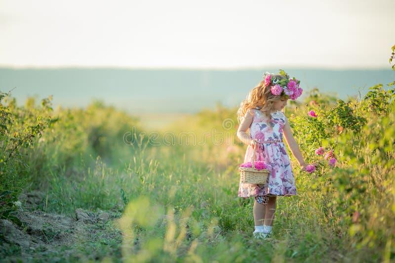 Ένα μικρό κορίτσι με τα όμορφα μακριά ξανθά μαλλιά, έντυσε σε ένα ελαφρύ φόρεμα και ένα στεφάνι των πραγματικών λουλουδιών στο κε στοκ εικόνες