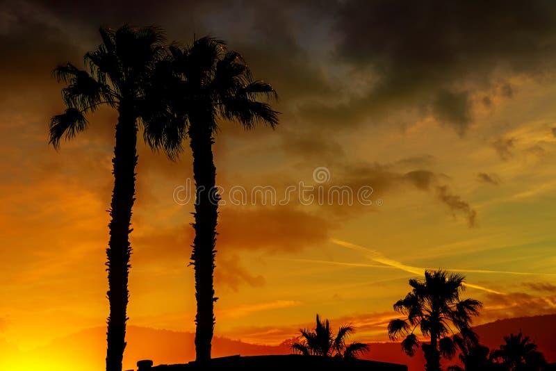 Ένα όμορφο ηλιοβασίλεμα με τα πορτοκαλιά και κίτρινα χρώματα στον ουρανό τα βουνά και οι φοίνικες στη σκιαγραφία στην απόσταση Αρ στοκ εικόνες