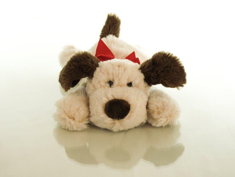 Ένα χαριτωμένο κουτάβι ξαπλώνεται στην κοιλιά του, είναι ευτυχής που παρουσιάστηκε στο παιδί για τα γενέθλιά του στοκ εικόνες με δικαίωμα ελεύθερης χρήσης