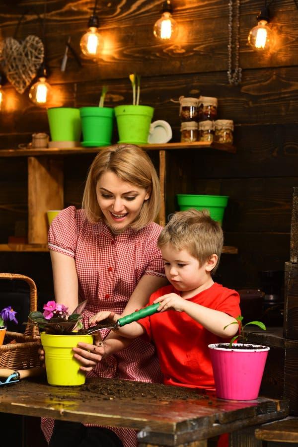 Έννοια νεαρών βλαστών Μητέρα και λίγο παιδί που μεταμοσχεύουν το houseplant νεαρό βλαστό Η μητέρα και ο γιος επαναφυτεύουν το νεα στοκ φωτογραφίες