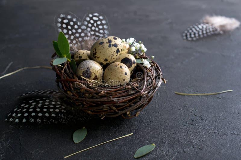 Έννοια Πάσχας - διακοσμητική φωλιά ιτιών με τα αυγά ορτυκιών, φτερό στο σκοτεινό σκουριασμένο υπόβαθρο Copyspace στοκ εικόνες