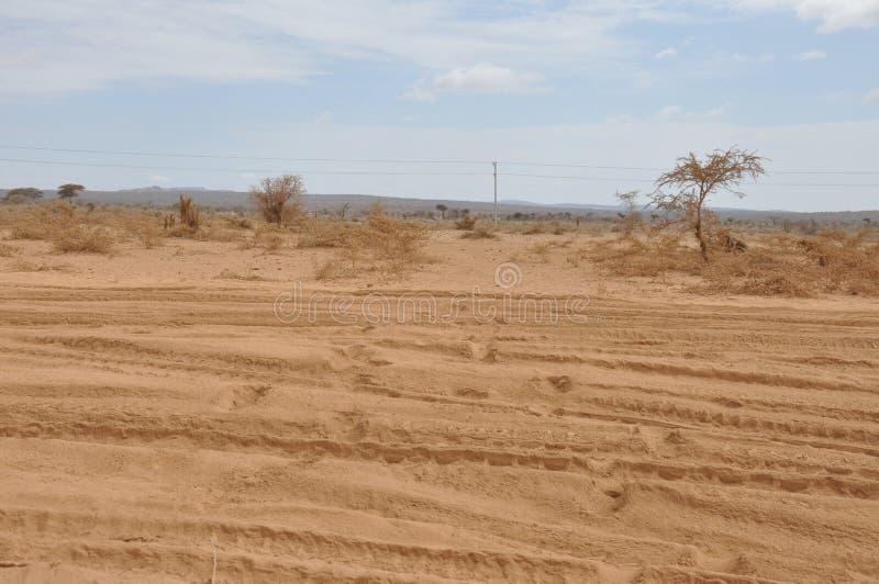 Έρημοι της Ανατολικής Αφρικής στοκ φωτογραφία με δικαίωμα ελεύθερης χρήσης
