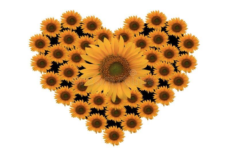 Αγάπη με το λουλούδι ήλιων στοκ εικόνες