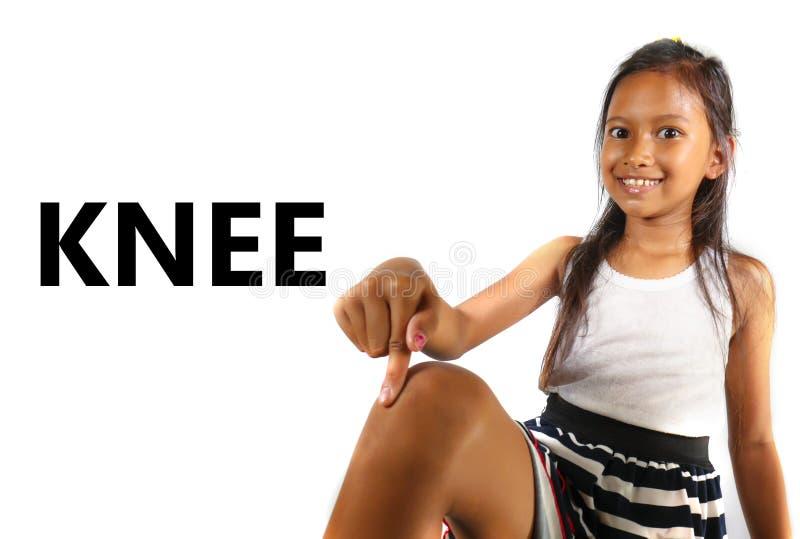Αγγλική μαθαίνοντας σχολική κάρτα μερών σωμάτων και προσώπου με το όμορφο και ευτυχές ασιατικό παιδί που δείχνει το γόνατό της πο στοκ εικόνα με δικαίωμα ελεύθερης χρήσης