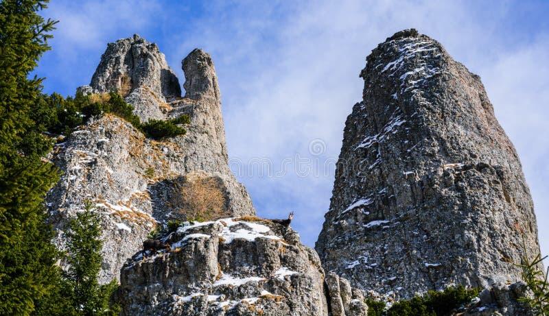 Ακρόπολη και μοναχοί στοκ φωτογραφία