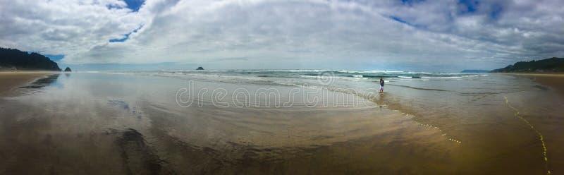 Ακρωτήριο αψίδων πανοράματος κοντά στην ακτή του Όρεγκον παραλιών πυροβόλων στοκ φωτογραφίες με δικαίωμα ελεύθερης χρήσης