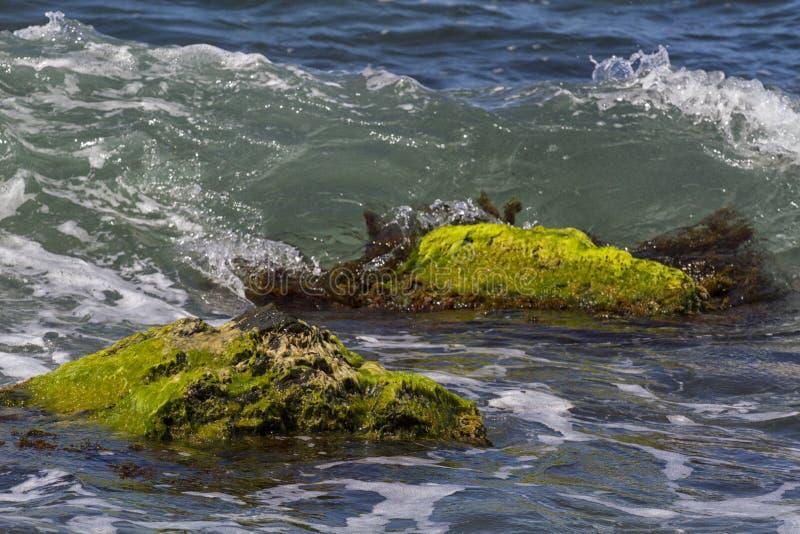 Ακτή Μαύρης Θάλασσας της Ρωσίας στοκ εικόνες