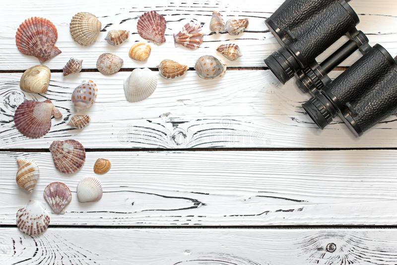 Ανάμεικτα θαλασσινά κοχύλια και διοφθαλμικός πυροβολισμός σε έναν λευκό ξύλινο πίνακα άνωθεν στοκ εικόνες