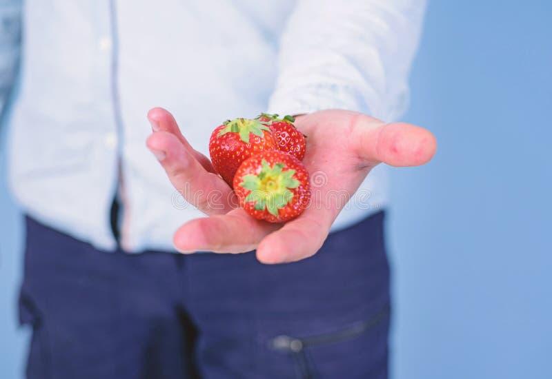 Αρσενικό χέρι με το μπλε υπόβαθρο φραουλών Οδηγίες οι ίδιοι Το χέρι προτείνει παίρνει τη φράουλα Φρέσκια συγκομιδή του ώριμου κοκ στοκ φωτογραφία με δικαίωμα ελεύθερης χρήσης