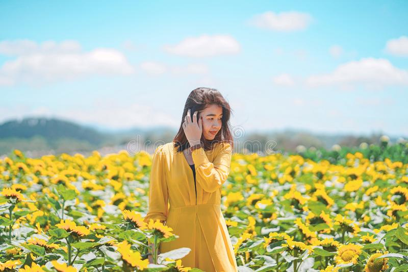 Ασιατική γυναίκα χαρούμενη με τον όμορφο τομέα ηλίανθων στοκ εικόνες