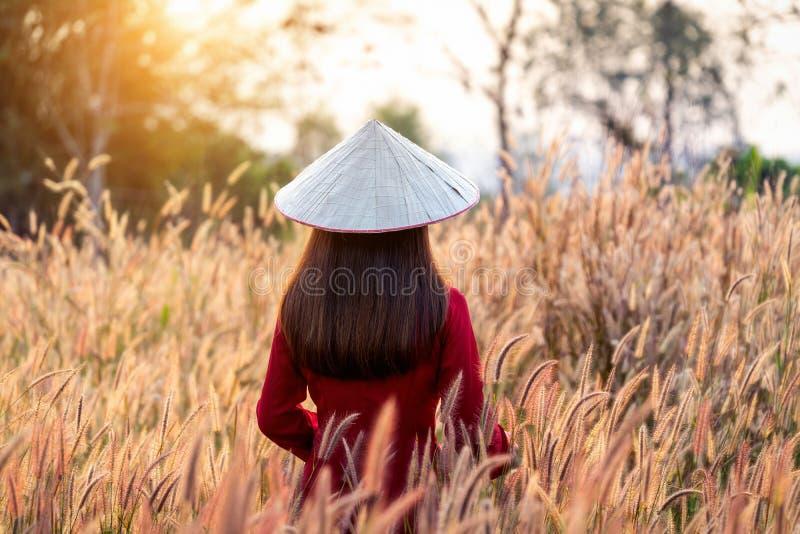 Ασιατική γυναίκα που φορά τον πολιτισμό του Βιετνάμ παραδοσιακό στον αφρικανικό τομέα λουλουδιών πηγών στοκ εικόνες