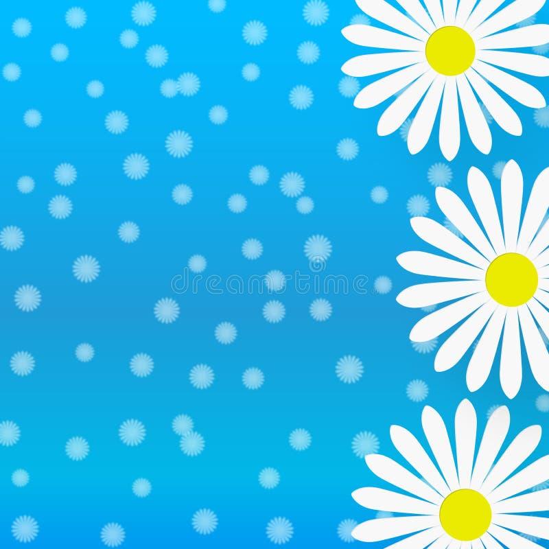 Αφηρημένα άσπρα λουλούδια της Daisy στο μπλε υπόβαθρο Gradated απεικόνιση αποθεμάτων