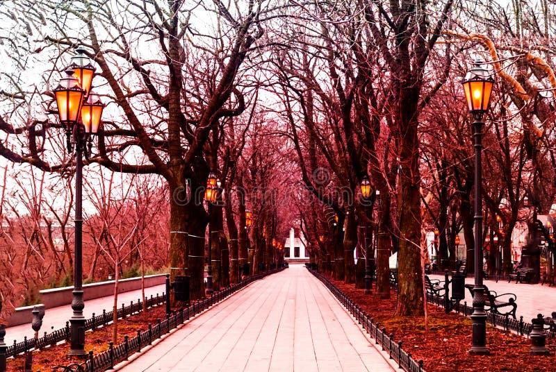 Αυθεντικά φανάρια στην αλέα στο πάρκο πόλεων στοκ εικόνα με δικαίωμα ελεύθερης χρήσης
