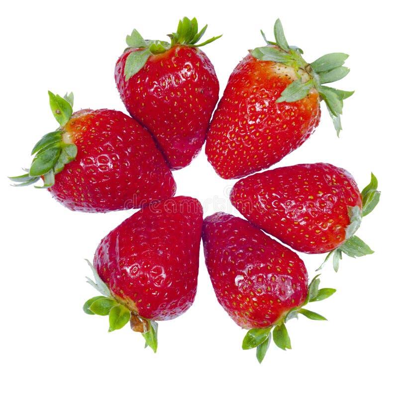 Απομονωμένες φρέσκες φράουλες με ένα άσπρο υπόβαθρο στοκ εικόνα