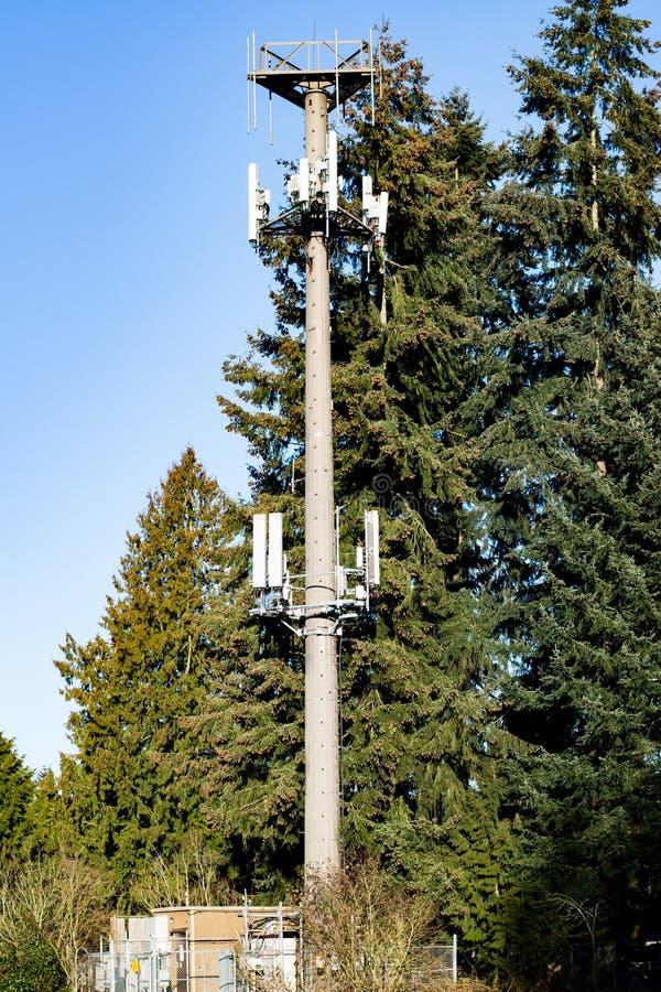 Απόμερος κυψελοειδής πύργος επικοινωνιών στοκ φωτογραφία με δικαίωμα ελεύθερης χρήσης