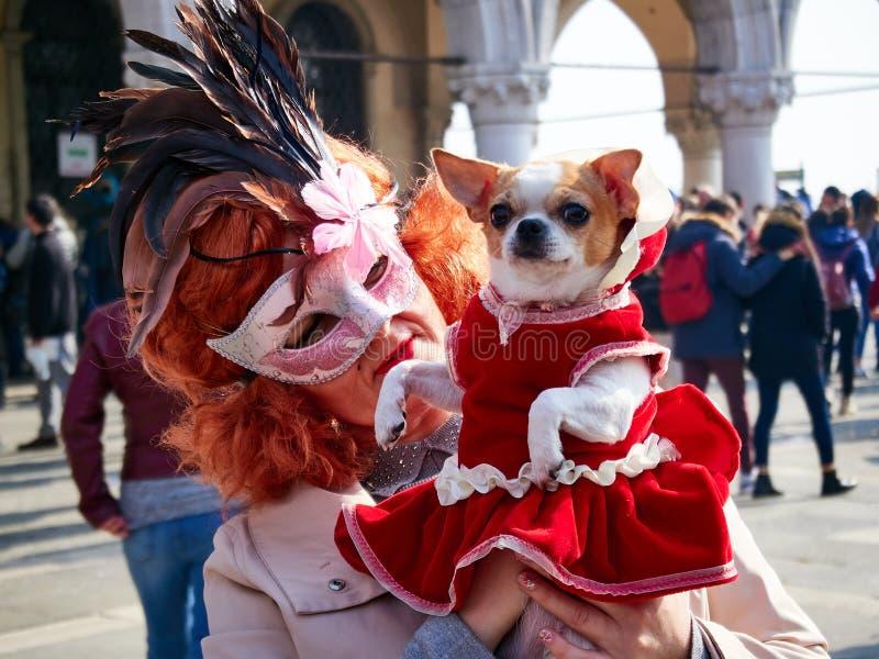 Βενετία, Ιταλία - 2 Μαρτίου 2019 το κατοικίδιο ζώο και ο ιδιοκτήτης σκυλιών έντυσαν με τα κοστούμια κατά τη διάρκεια καρναβαλιού  στοκ φωτογραφίες με δικαίωμα ελεύθερης χρήσης