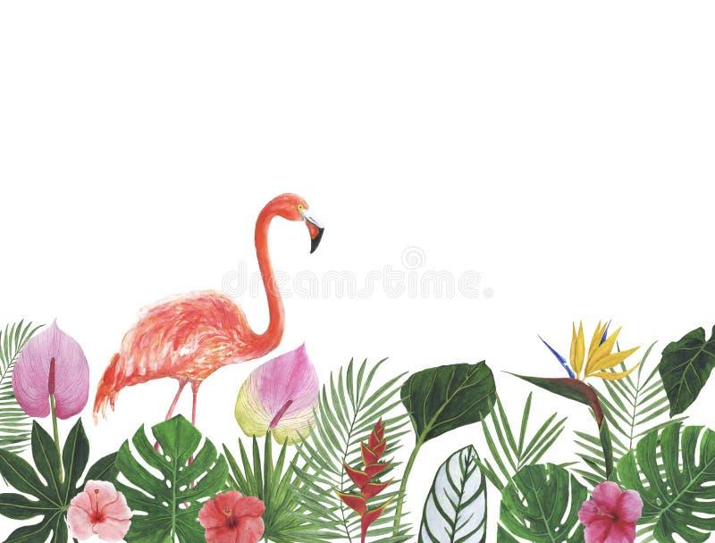 Βοτανικά συγχαρητήρια διακοσμήσεων σχεδίου πρόσκλησης καρτών διακοσμήσεων διακοσμήσεων απεικονίσεων Watercolor τροπικών κύκλων στοκ εικόνα με δικαίωμα ελεύθερης χρήσης