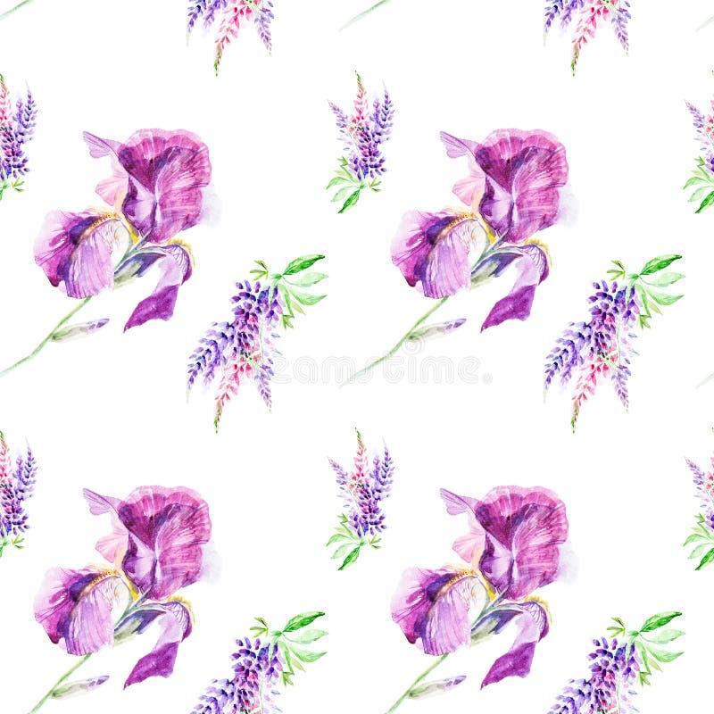 Βοτανικά lupines απεικόνισης Watercolor και λουλούδια ίριδων που απομονώνονται στο άσπρο υπόβαθρο πρότυπο άνευ ραφής απεικόνιση αποθεμάτων