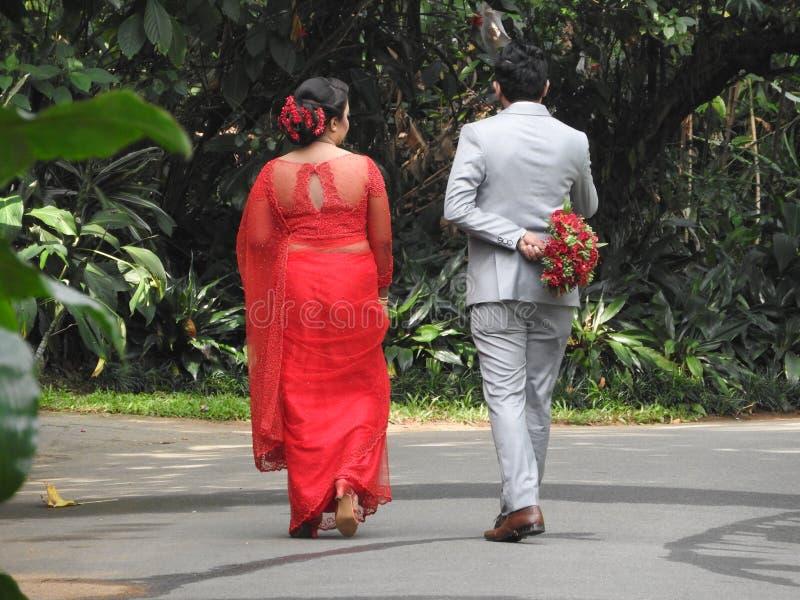 γάμος ημέρα δέσμευση Η νύφη και ο νεόνυμφος σε ένα γαμήλιο φόρεμα, περνούν από την πράσινη αλέα, από την πλάτη Η νύφη στο κόκκινο στοκ φωτογραφία