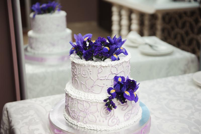 γάμος 8 πιτών Εύγευστος γλυκός μπουφές διακοπών με τα επιδόρπια στοκ φωτογραφίες με δικαίωμα ελεύθερης χρήσης