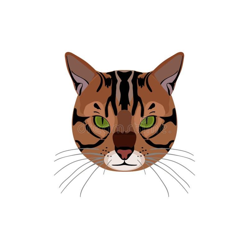 Γάτα της Βεγγάλης καφετής-που επισημαίνεται διανυσματική απεικόνιση