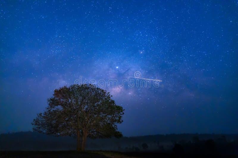 Γαλακτώδης γαλαξίας τρόπων, μακριά φωτογραφία έκθεσης με το σιτάρι Μελέτη αστεριών και γαλακτώδης αστρονομία τρόπων στο πάρκο nat στοκ εικόνες