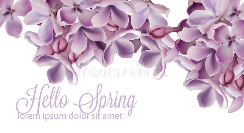 Γειά σου υπόβαθρο άνοιξη με το πορφυρό ιώδες διανυσματικό watercolor λουλουδιών Ρομαντική floral διακόσμηση γάμου ή ευχετήριων κα ελεύθερη απεικόνιση δικαιώματος
