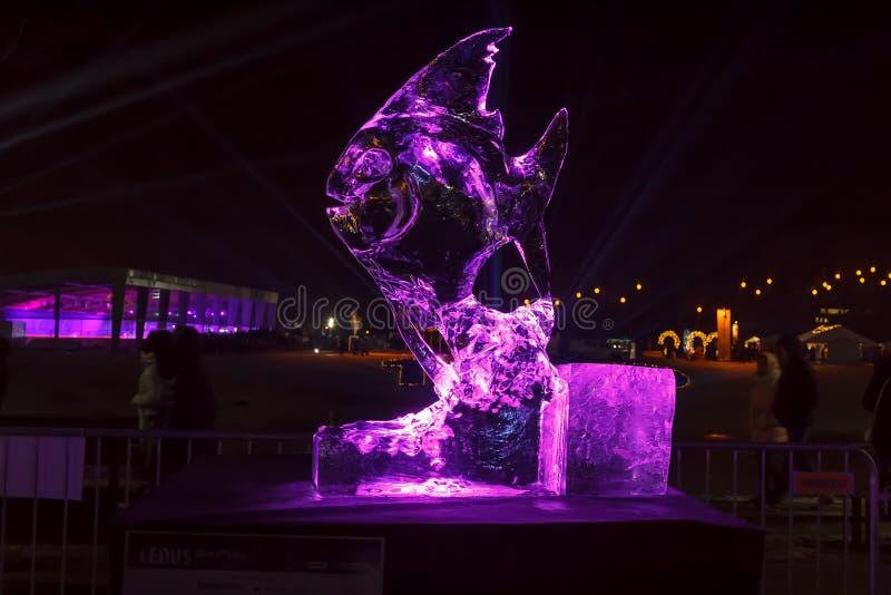 Γλυπτό πάγου των ψαριών Φεστιβάλ σε Jelgava, Λετονία στις 9 Φεβρουαρίου 2019 στοκ φωτογραφίες