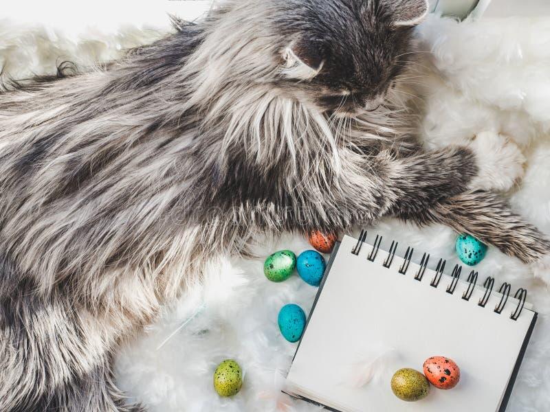Γοητευτικό γατάκι, sketchbook με μια κενή σελίδα και τα αυγά Πάσχας στοκ εικόνες με δικαίωμα ελεύθερης χρήσης