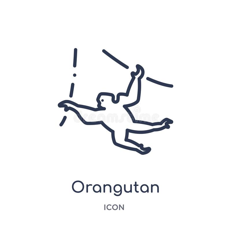 Γραμμικό orangutan εικονίδιο από τα ζώα και τη συλλογή περιλήψεων άγριας φύσης Λεπτό orangutan γραμμών διάνυσμα που απομονώνεται  διανυσματική απεικόνιση