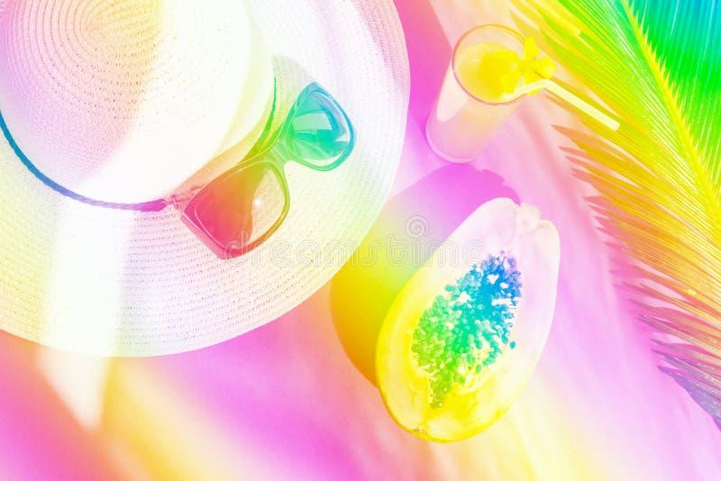 Γυαλί γυαλιών ηλίου καπέλων αχύρου με το φρέσκο τροπικό papaya χυμού φρούτων φύλλο φοινικών Καθιερώνον τη μόδα δονούμενο νέο κλίσ στοκ φωτογραφίες