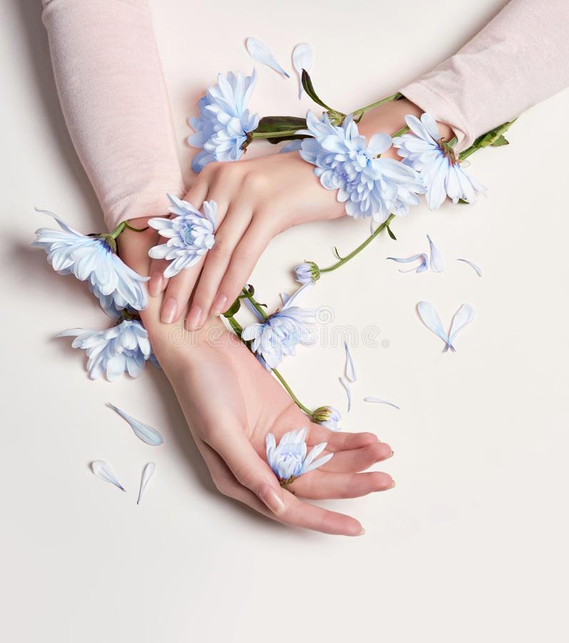 Γυναίκα πορτρέτου τέχνης μόδας στο θερινό φόρεμα και λουλούδια στο χέρι της με μια φωτεινή αντιπαράθεση makeup Δημιουργικά κορίτσ στοκ φωτογραφία με δικαίωμα ελεύθερης χρήσης